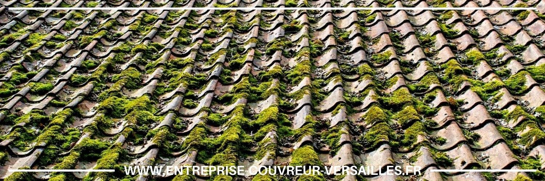 démoussage de toiture Bougival
